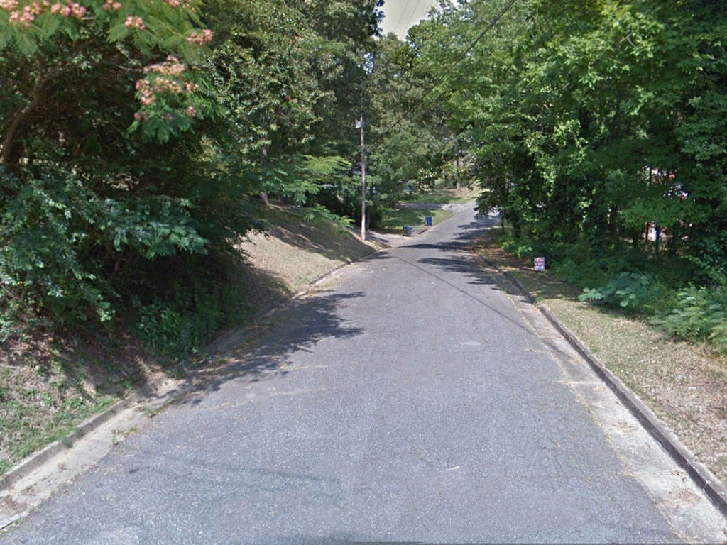 Beautiful Third of an Acre Lot in Anniston Alabama - Image 4