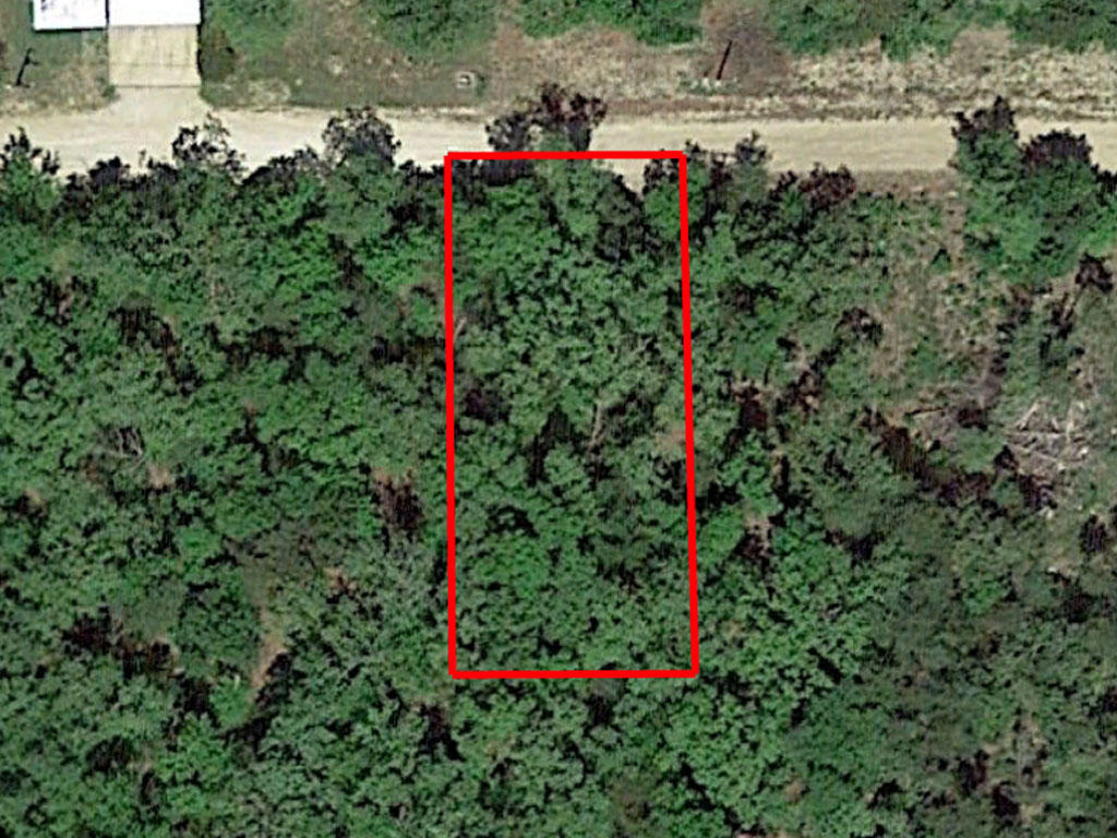 Perfect Lot Less than 1 mile from Shoals Lake - Image 1