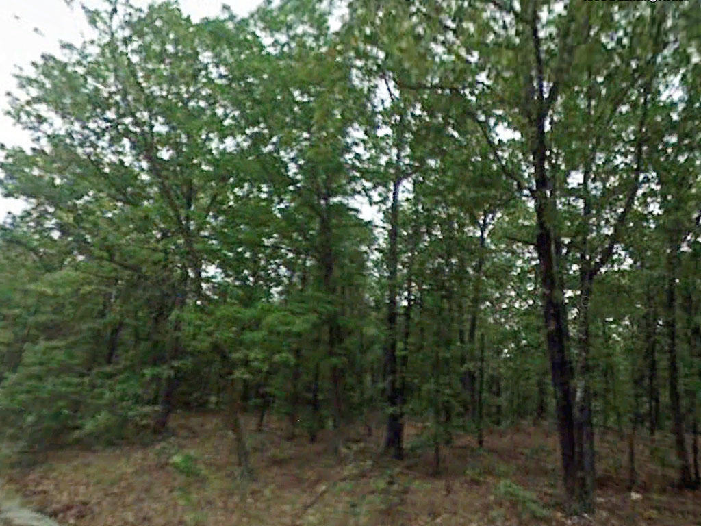 Amazing Third of a Acre Lot Close to Crown and Diamond Lakes - Image 0