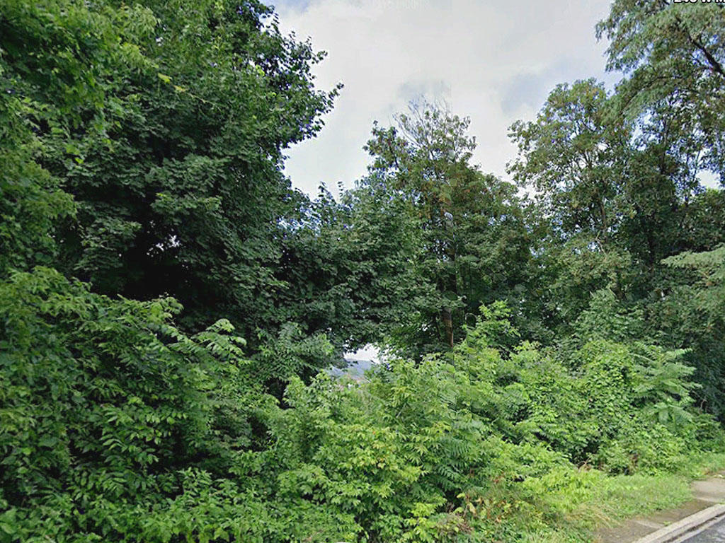 Half an acre near the Lehigh River - Image 3