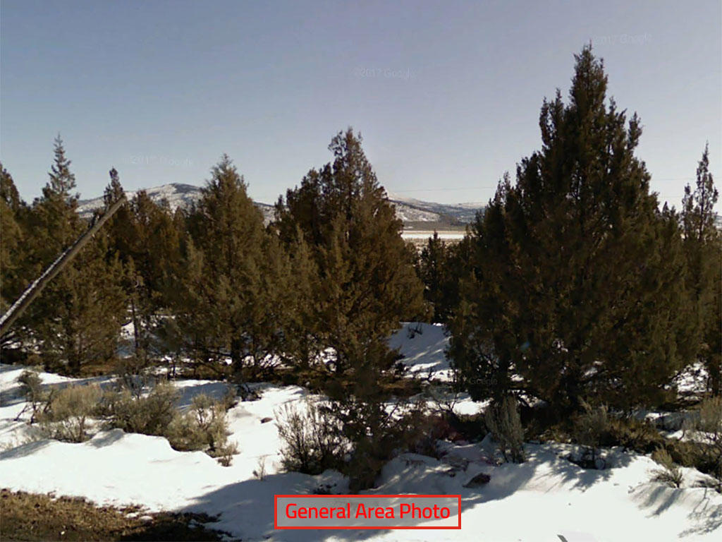 Over 20 Acres in California - Image 0