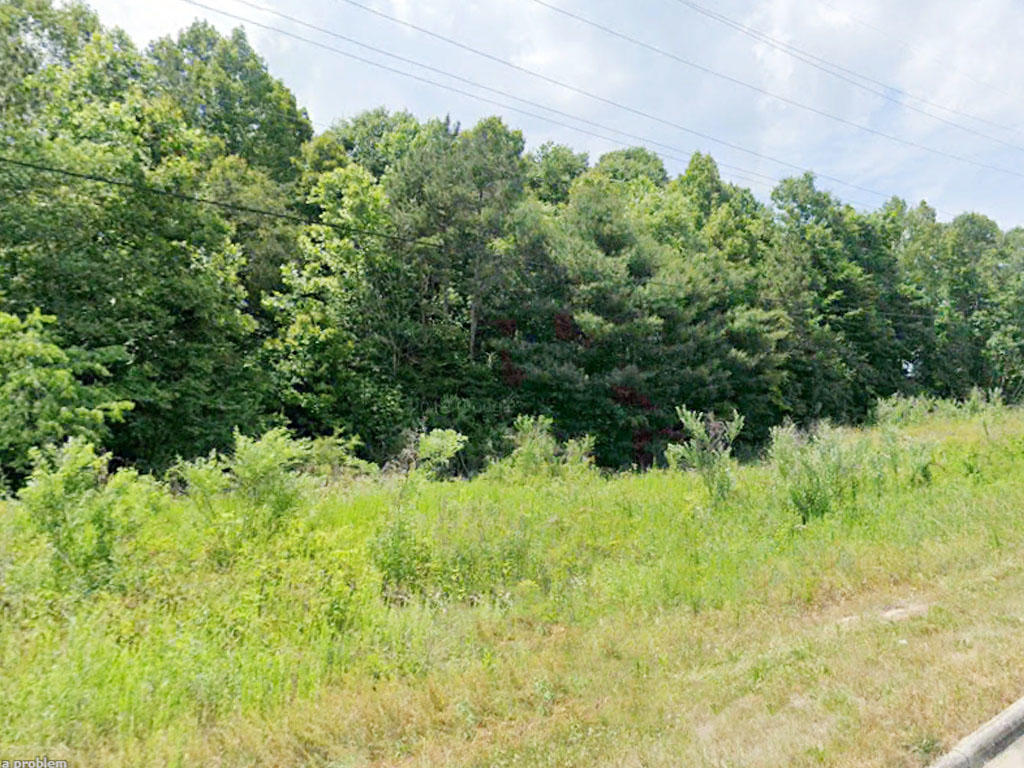 Rare Opportunity on 1 Acre Lot - Image 3