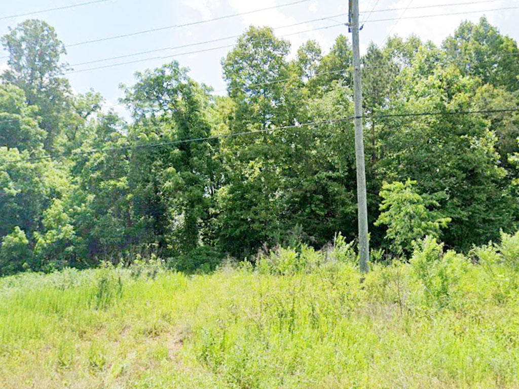 Rare Opportunity on 1 Acre Lot - Image 0