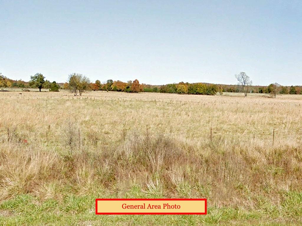 Spacious Lot in the Natural State - Image 0