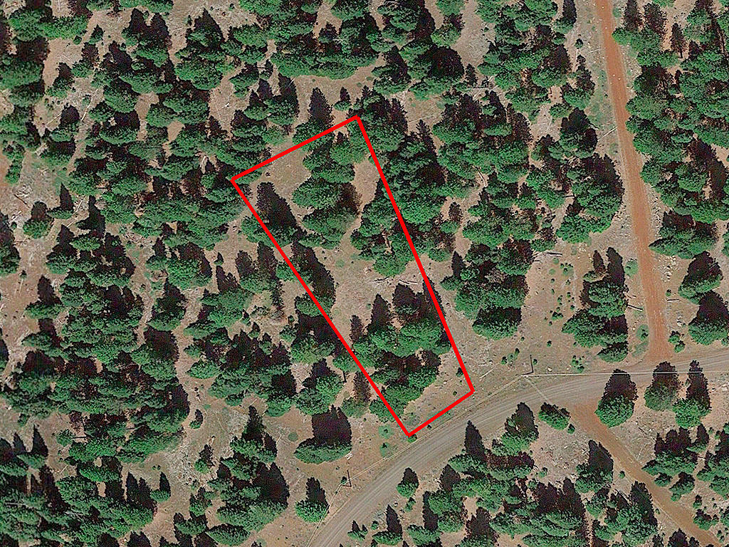 One Acre Parcel in California Pines - Image 1