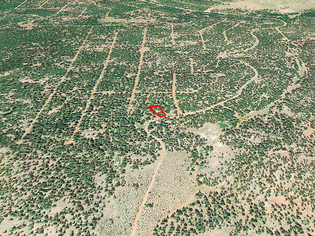 One Acre Parcel in California Pines - Image 2