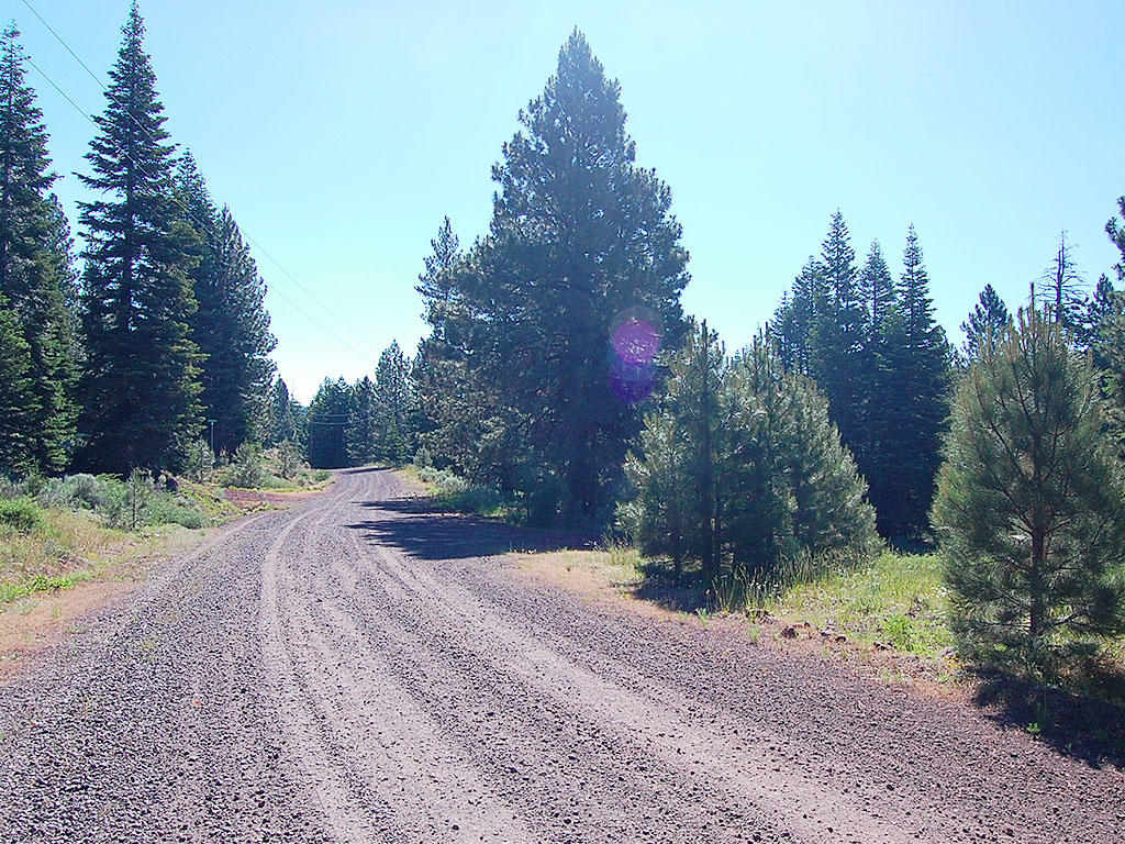 One Acre Parcel in California Pines - Image 4