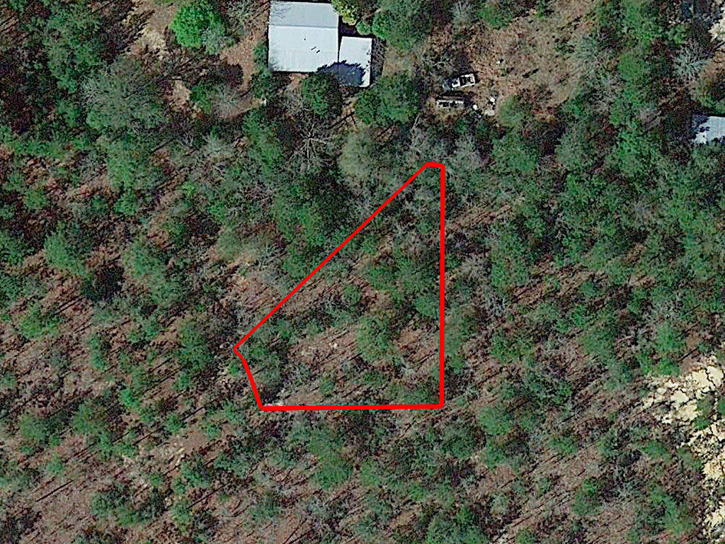 One Third of an Acre in Defuniak Springs - Image 1