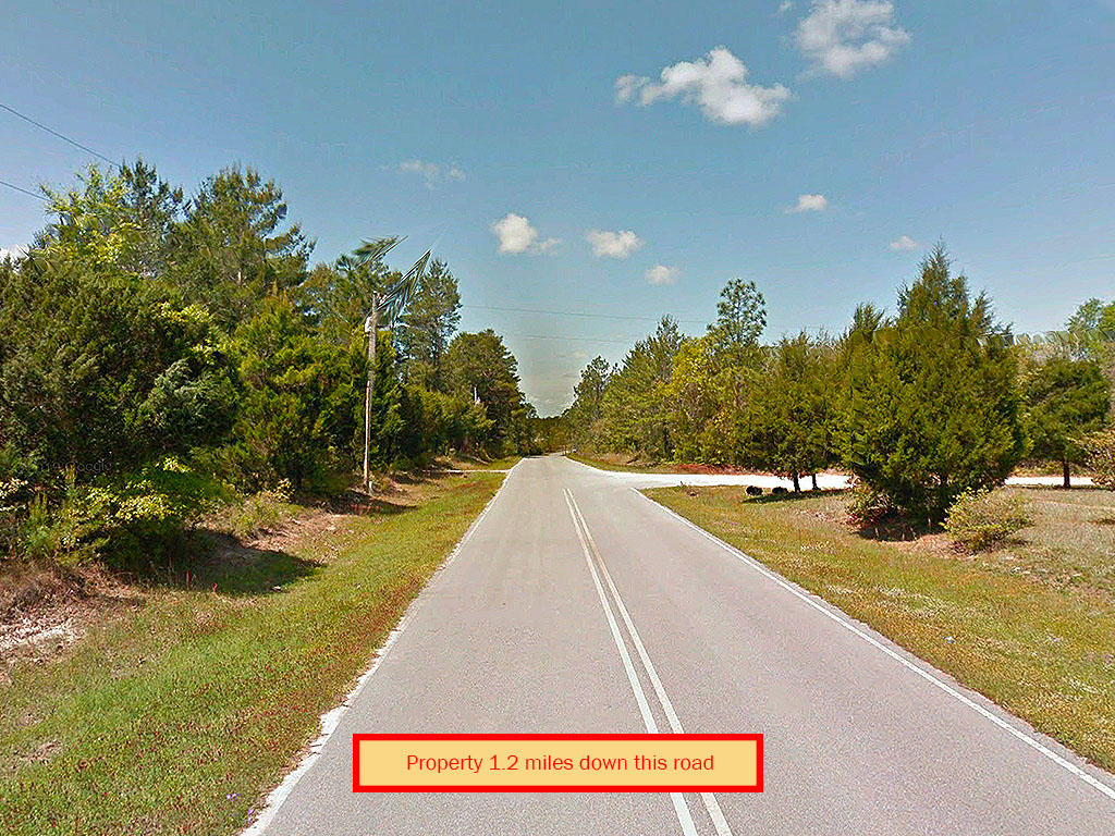 One Third of an Acre in Defuniak Springs - Image 4