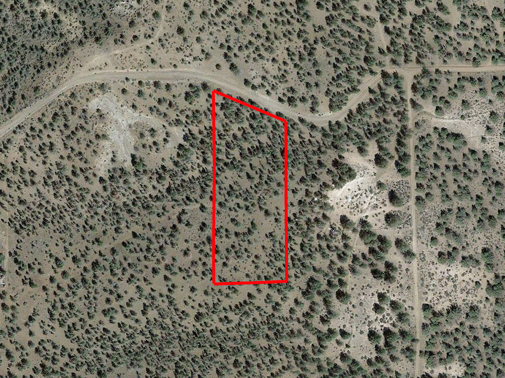 Gorgeous 3 Acre Lot in Modoc County - Image 1