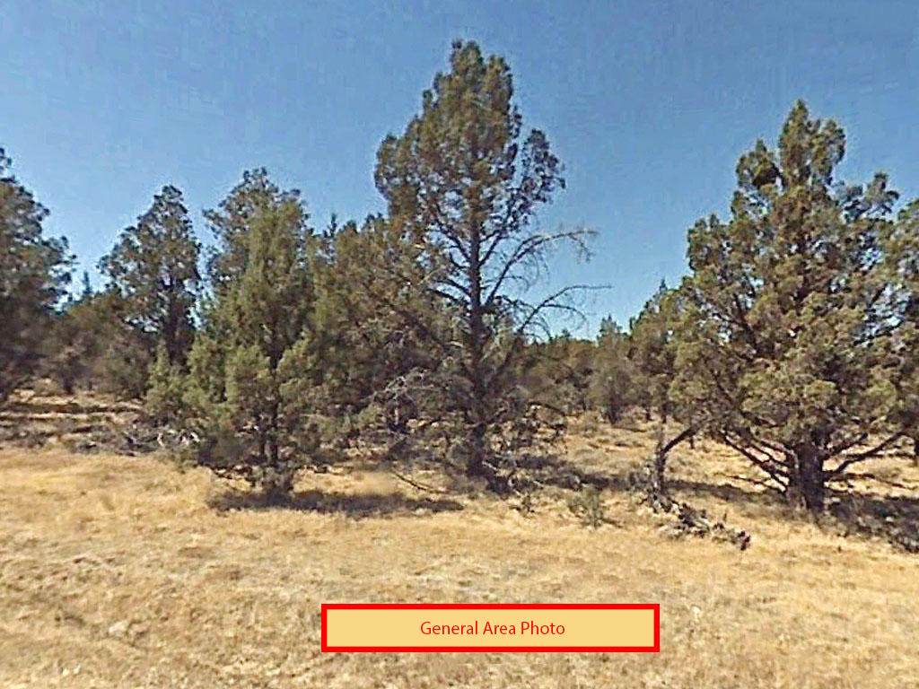 Gorgeous 3 Acre Lot in Modoc County - Image 3