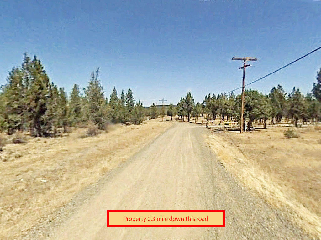 Gorgeous 3 Acre Lot in Modoc County - Image 4
