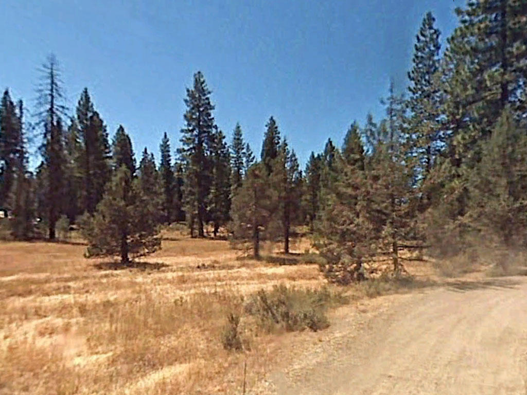 Gorgeous 1 Acre for Tranquil Living - Image 0