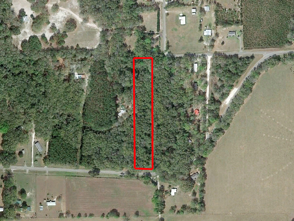 Escape to Over Three Acres in Northern Florida - Image 1
