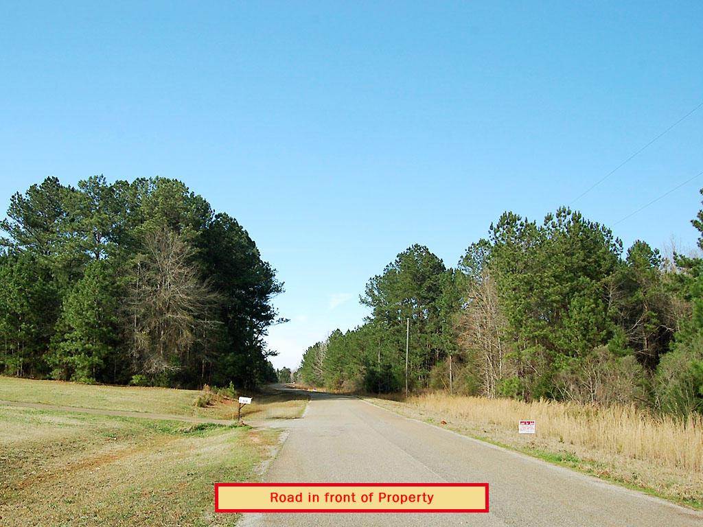 Gorgeous 2 Acres in Historic Community - Image 4