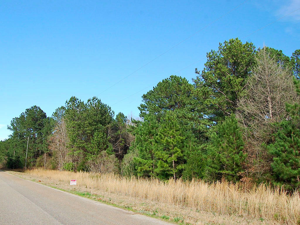 Gorgeous 2 Acres in Historic Community - Image 0