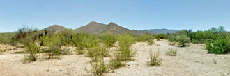 1 acre Escape near Tucson