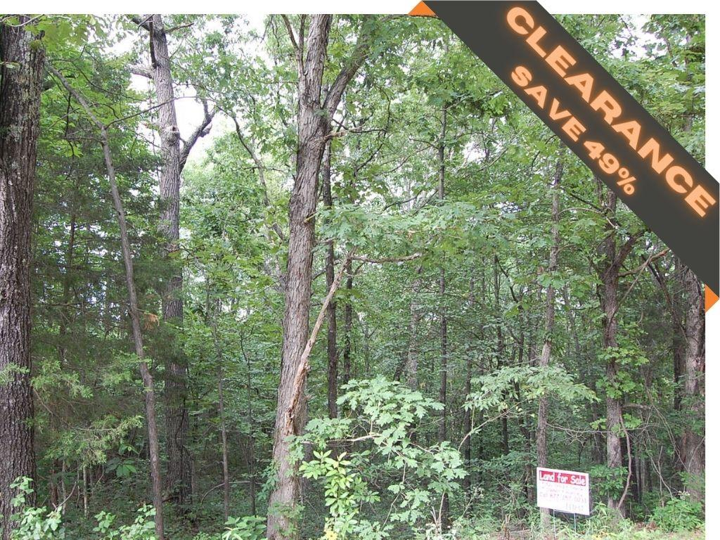 Treed property surrounded by lakes - Image 0
