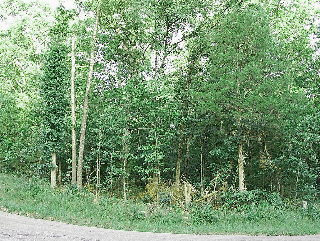 Prime Double Lot in Sharp County Arkansas - Image 0