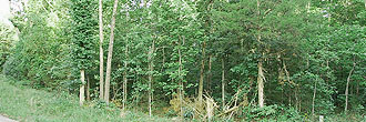 Prime Double Lot in Sharp County Arkansas