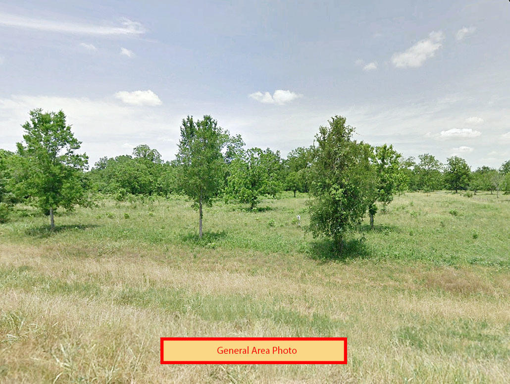 Cute Residential Property in Rosharon Ready for Development - Image 0