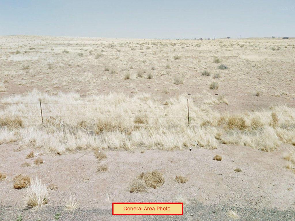 Arizona Acreage Near the Painted Desert - Image 3