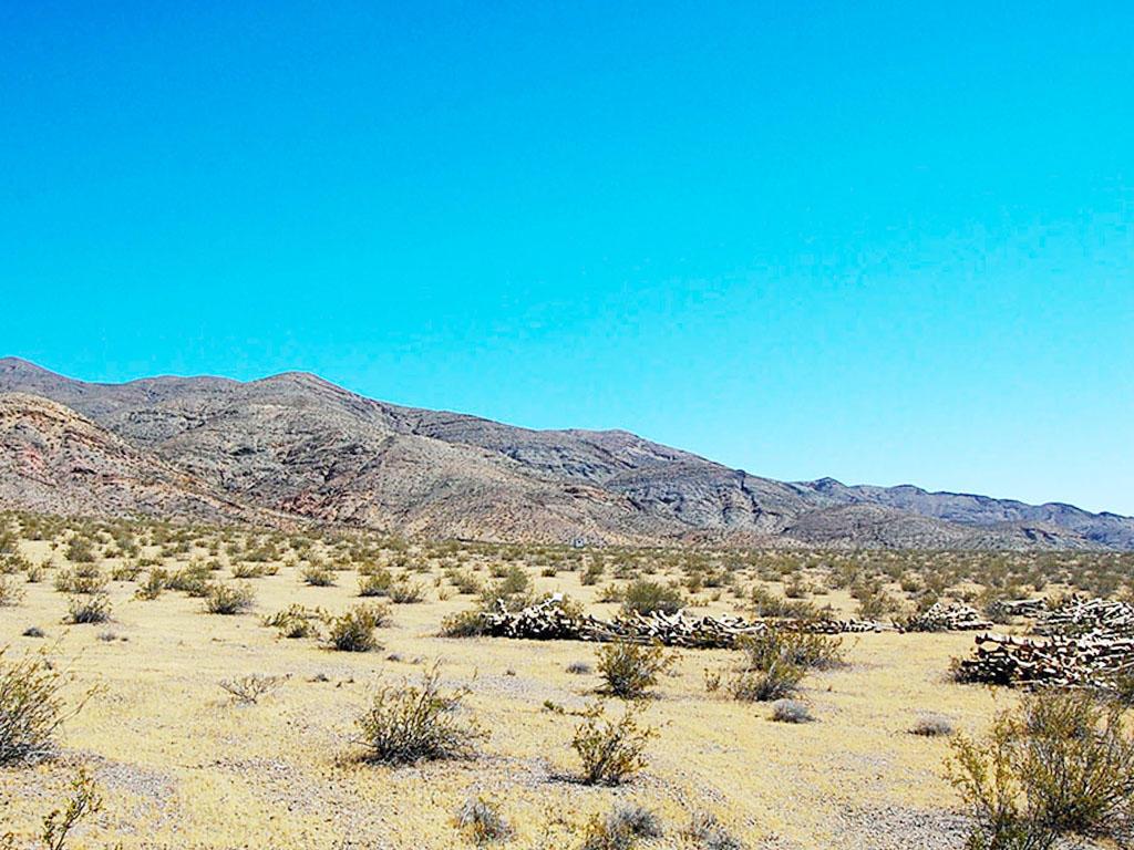 Brilliant 20 Acre Bonanza just 2 Hours North of Los Angeles - Image 3