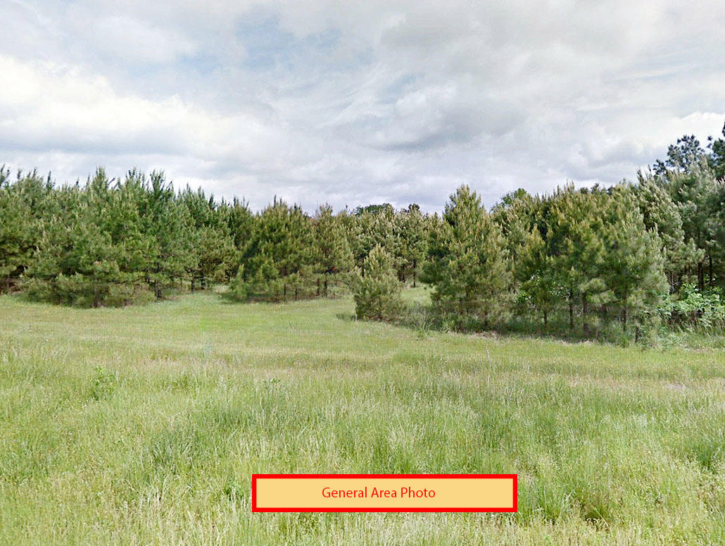 Central Arkansas Land is Great Value for Money - Image 0