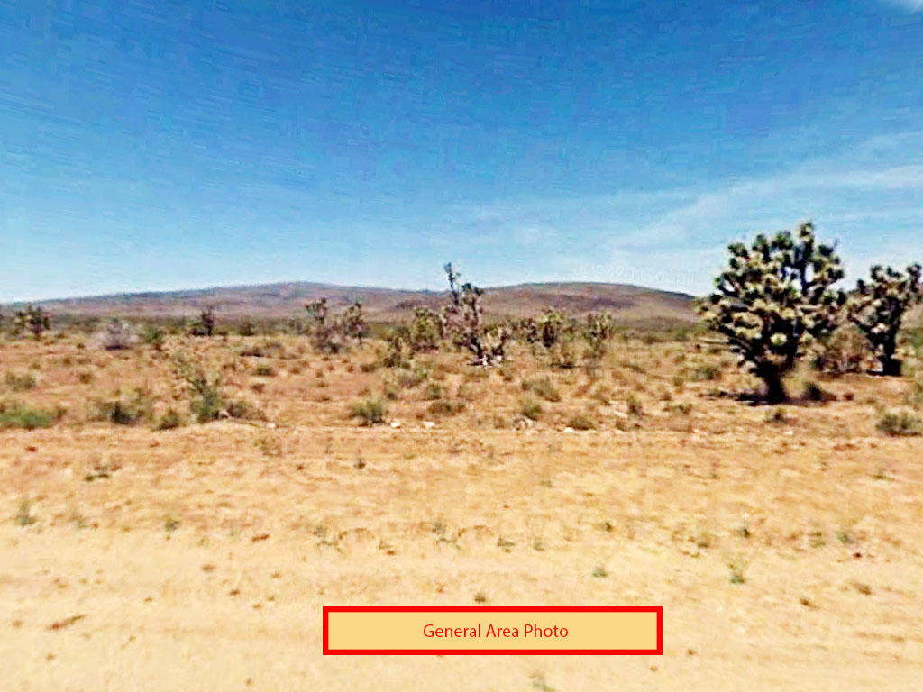 One Acre in Growth Area of Mohave County - Image 3