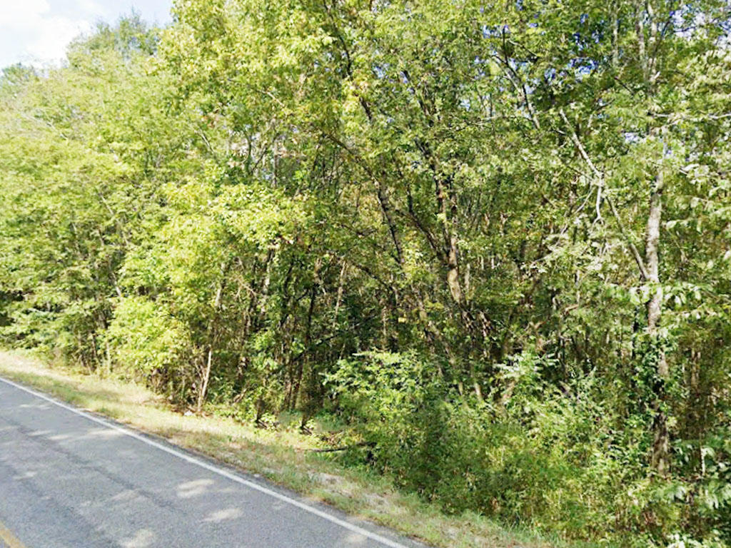Northern Mississippi Parcel in Ideal Location - Image 0