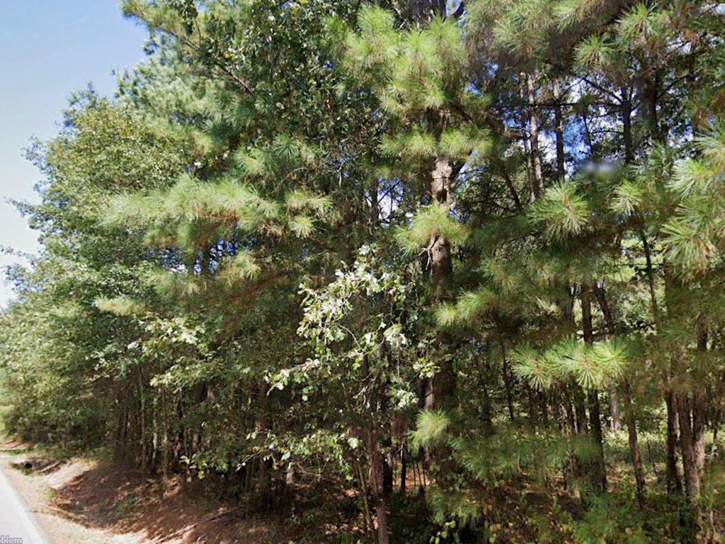 Charming Lot Near Lake Pine Bluff - Image 3