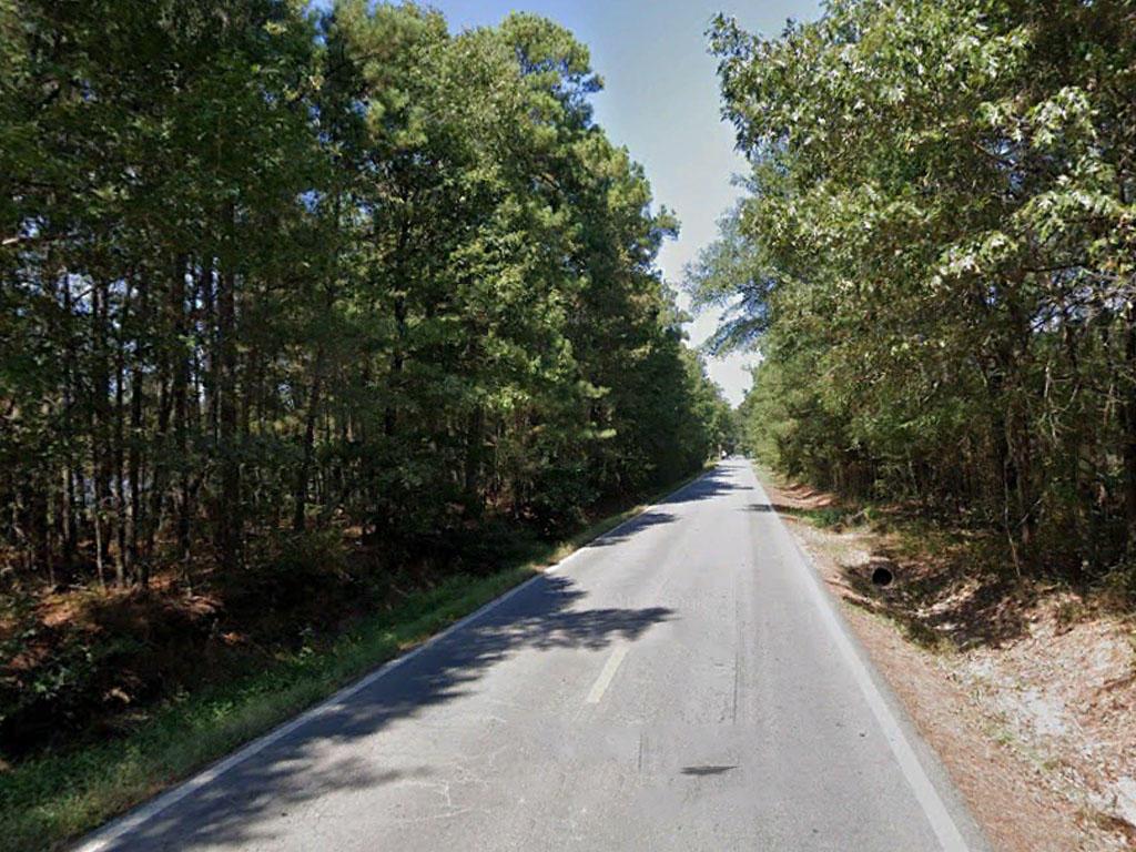 Charming Lot Near Lake Pine Bluff - Image 4