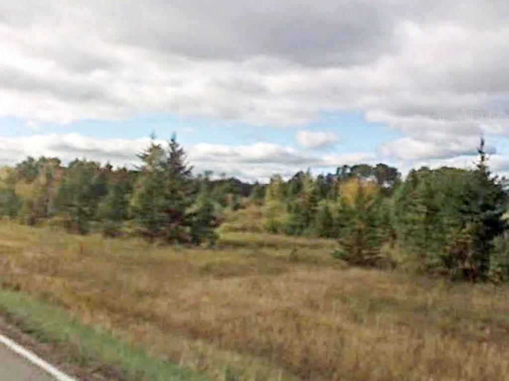 18 Acres of Pure Minnesota Land - Image 0