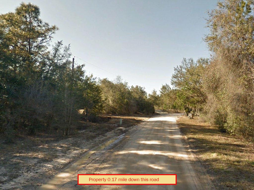 Near Half Acre in Sunshine State - Image 4