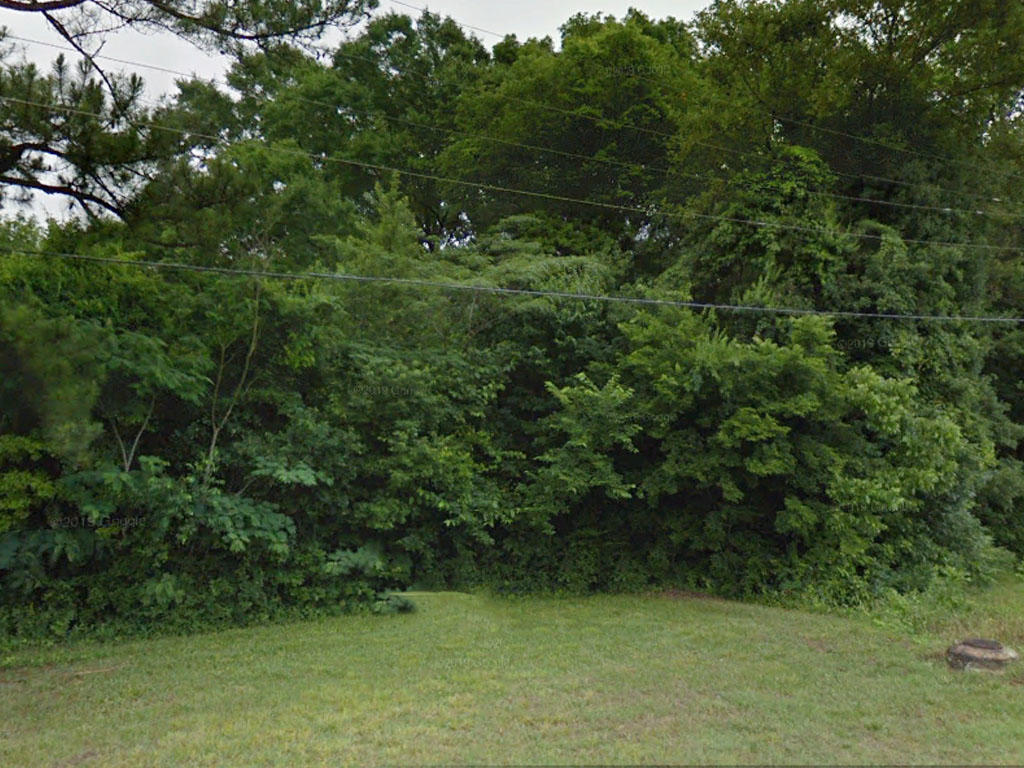 Treed Lot at end of Cul-de-sac in Bessemer Alabama - Image 3