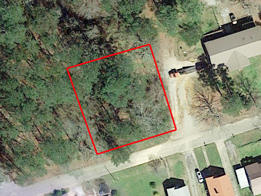 A prime piece of property located an hour from Birmingham Alabama - Image 1