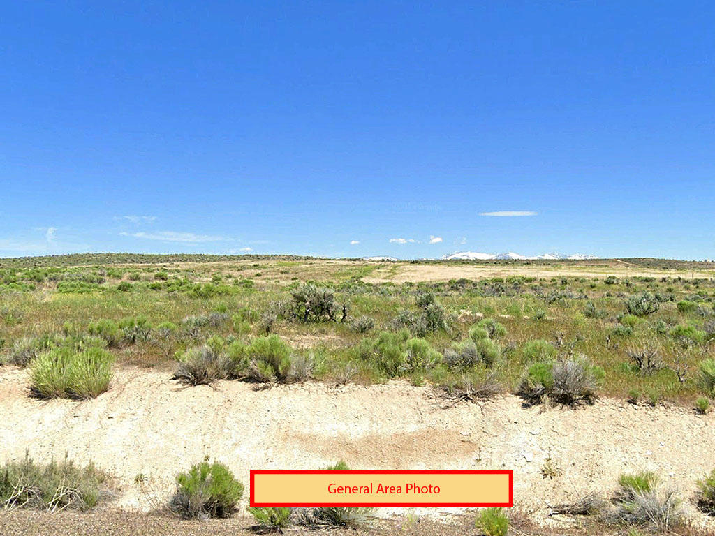 Hold Your Horses and Head to this Homestead Acre in Elko County - Image 3