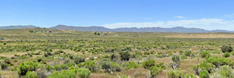 Hold Your Horses and Head to this Homestead Acre in Elko County