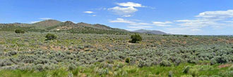 Over an acre in serene Nevada