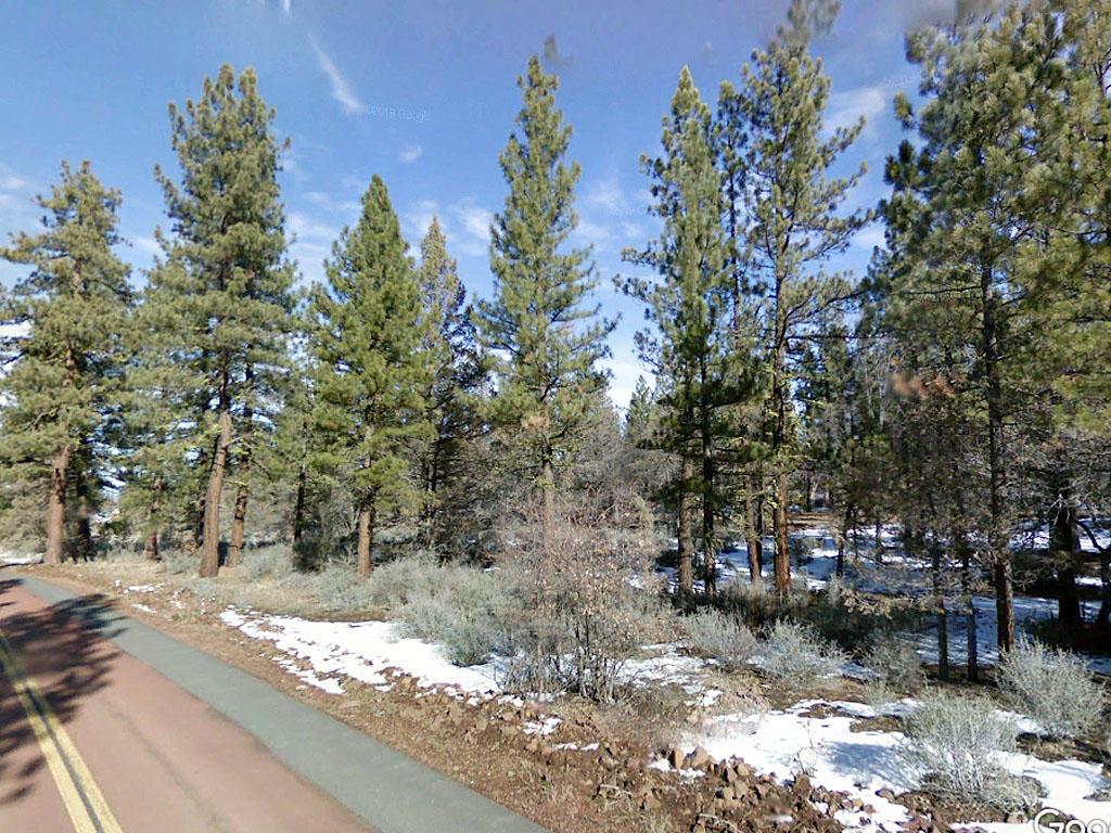 Hillside Treed Rural Lassen County Haven - Image 0