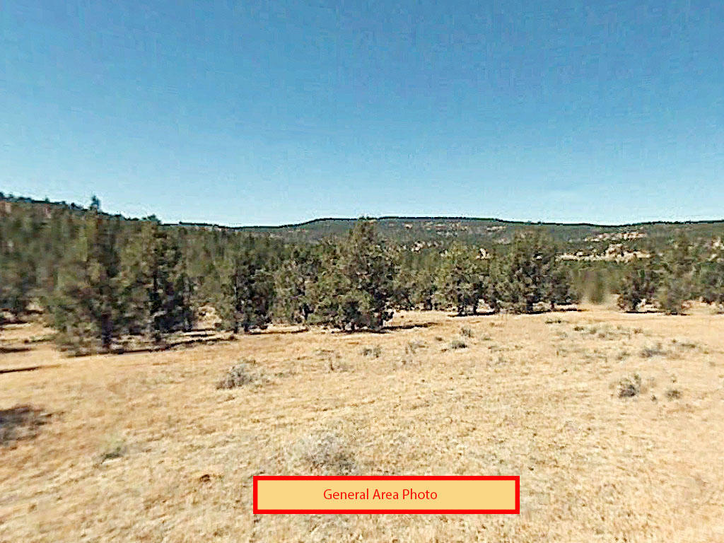 Two acre California property close to lakes and national forests - Image 0