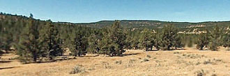 Two acre California property close to lakes and national forests
