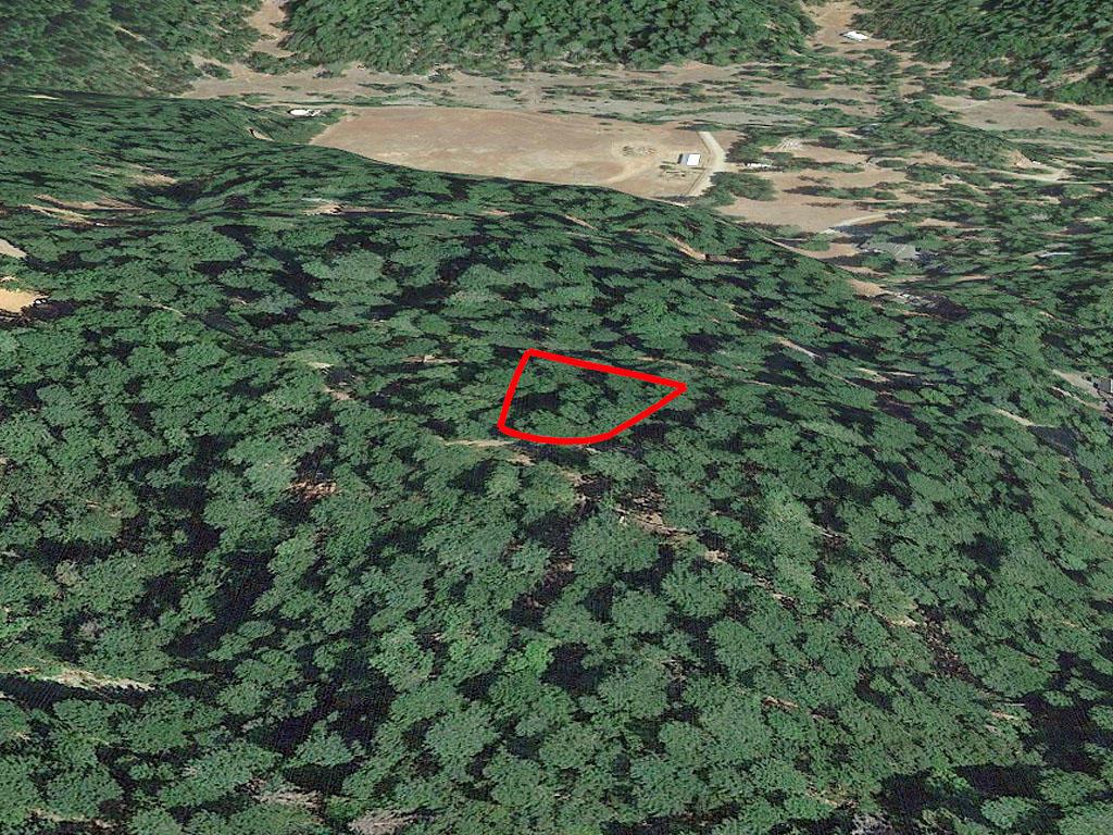Half in acre in Lake County, California - Image 2