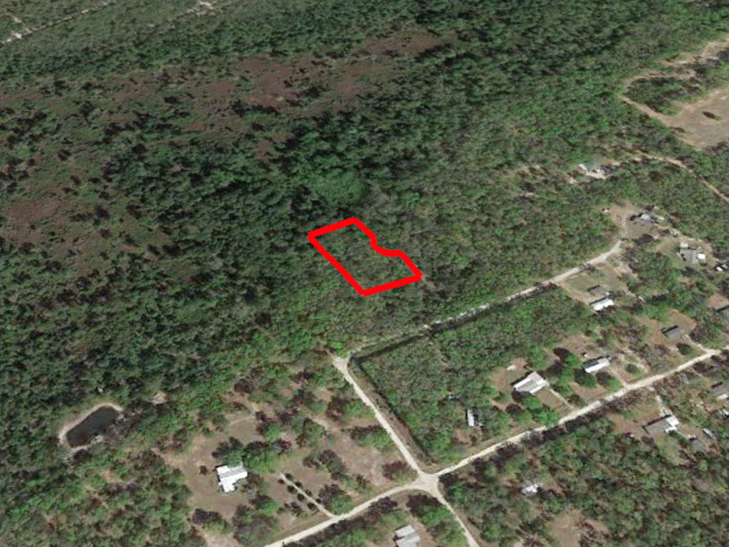 Over an acre in sunny Florida - Image 2