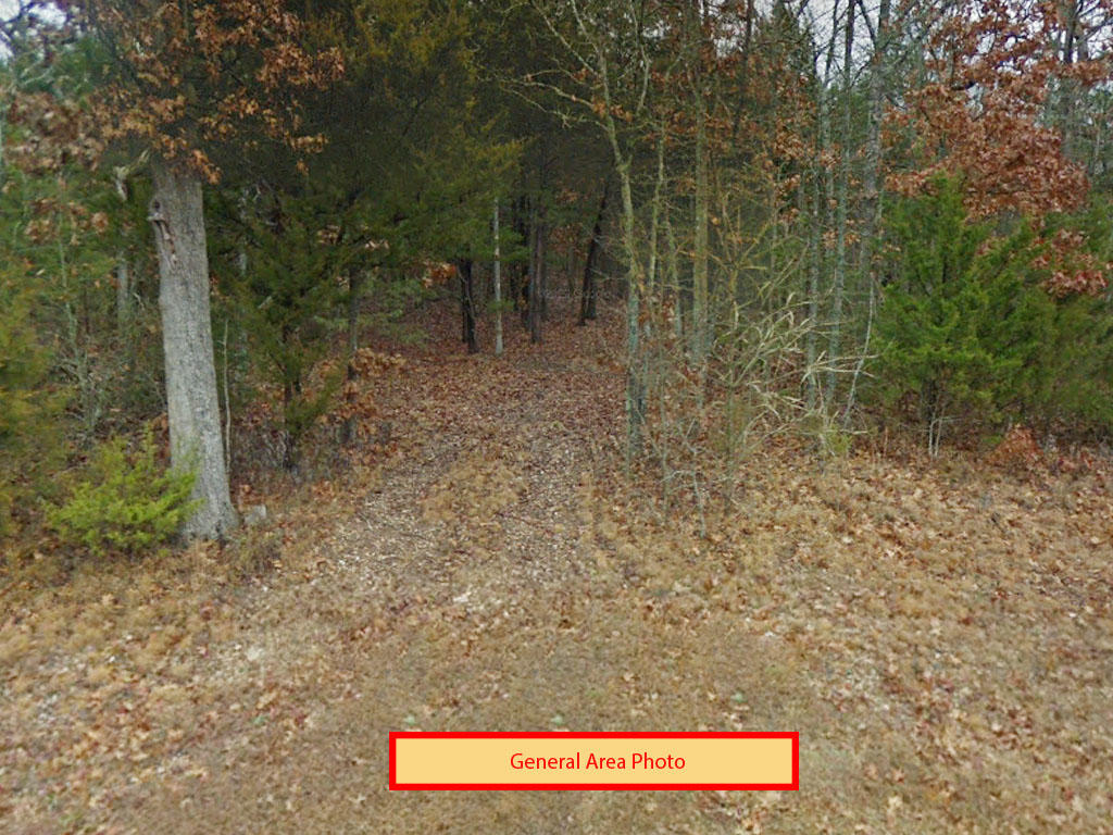Half an acre backed up to Table Rock Lake - Image 3