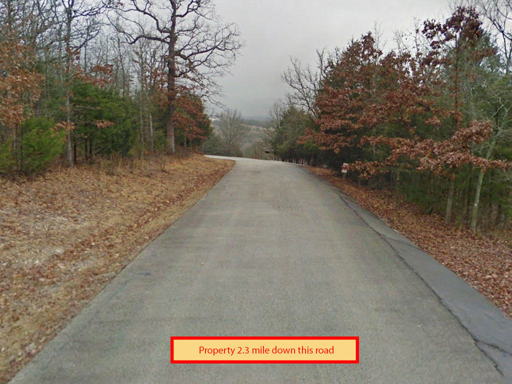 Half an acre backed up to Table Rock Lake - Image 4