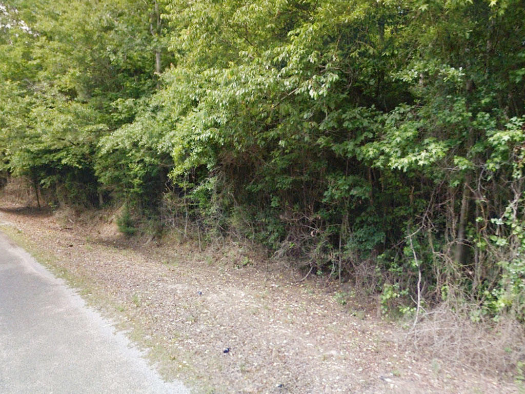 One and a half acre property only an hour and a half to Jackson - Image 3