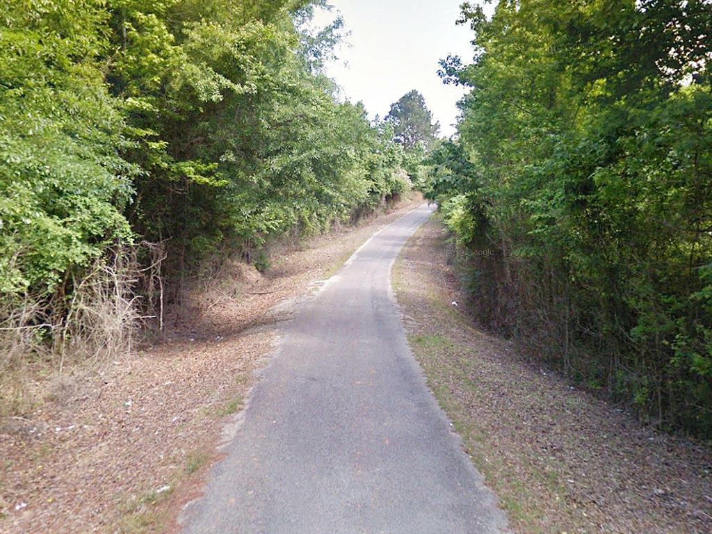 One and a half acre property only an hour and a half to Jackson - Image 4