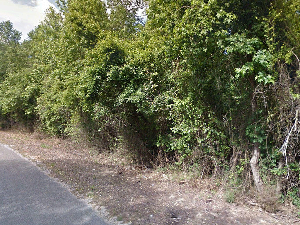 One and a half acre property only an hour and a half to Jackson - Image 0