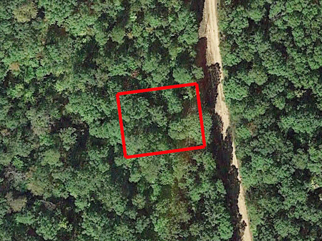 Over a quarter of an acre close to the water - Image 1